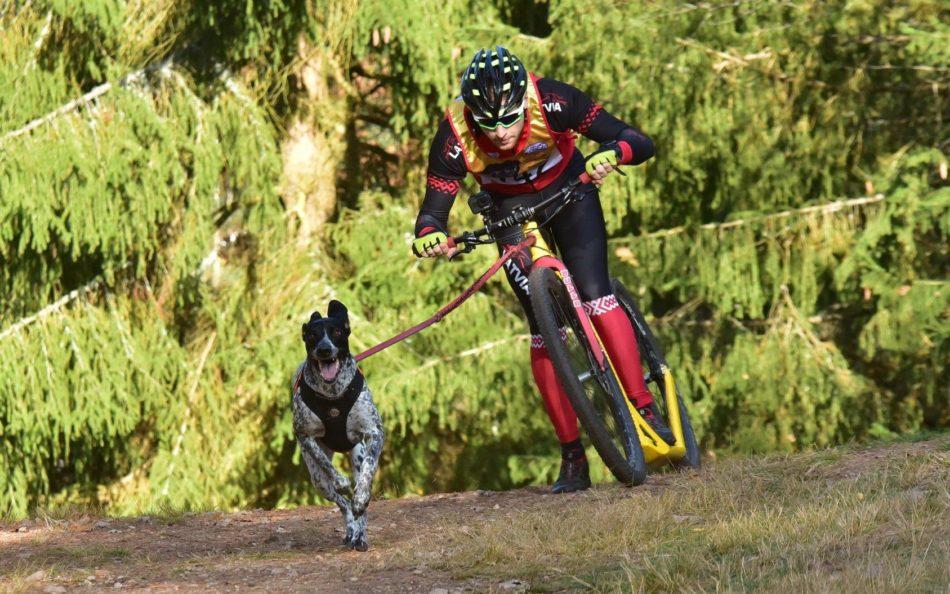 velo sportists ar skrienošu suni pie saites